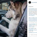 Game changing tips to succeed on Instagram by GM of marketing services at Mercedes-Benz USA
